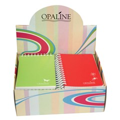 OPALINE Display of 16 Notebooks Asstd Lines & Quad