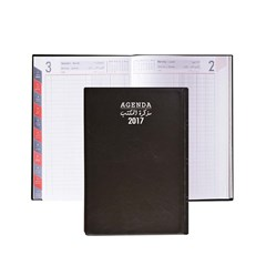 2017 Diary daily PVC Cov 2col,R.Op,Monthly Tabs B5